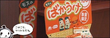 teroyaki6